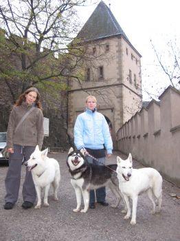 Výlet na hrad Karlštejn