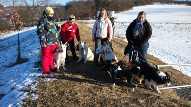 Hexa, Honey, Cally, Haidi a nový kamarádi